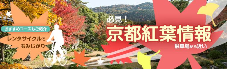 必見!駐車場から近い 京都紅葉情報